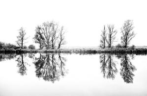 broads winter(2)